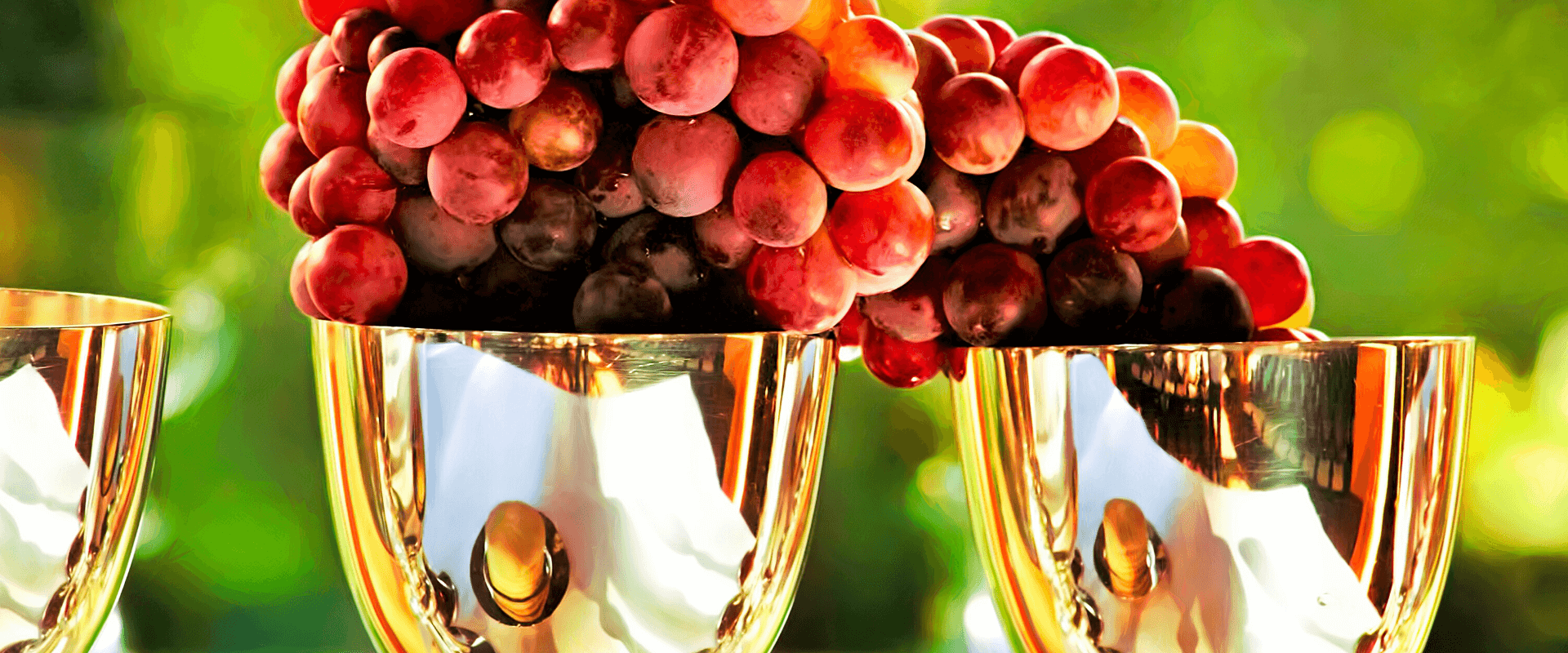 benefits of organic grape seed oil for skin and hair